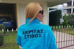 Μαρία-Μίτροβιτς